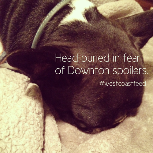 downward facing downton dog ©alexashersears