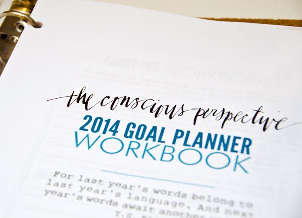 conscious pov goal planner