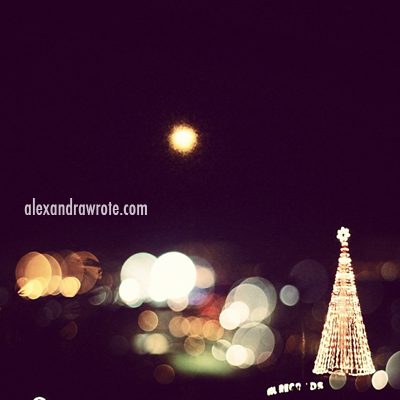 hollywood holidays ©alexashersears